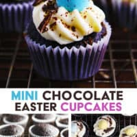 Mini chocolate cupcakes decorated with a mini chocolate egg