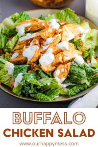 A bowl of buffalo chicken salad